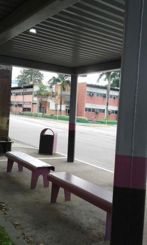 Tem telhado de ponto de ônibus que mais parece uma peneira